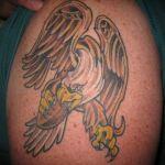 img_0452_eagles1_0